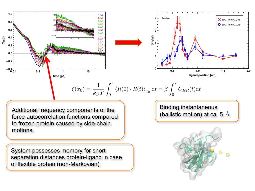 molecular dynamics simulation thesis